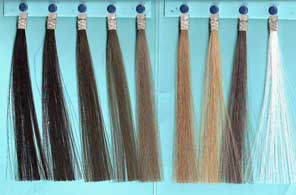 Exoderm Artificial hair implant Nido colors